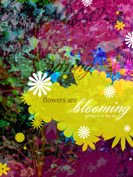 Flowers are Blooming!